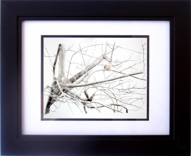 A framed 8 x 10 digital print.