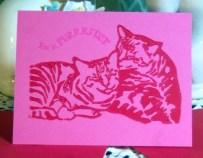 Magenta card.