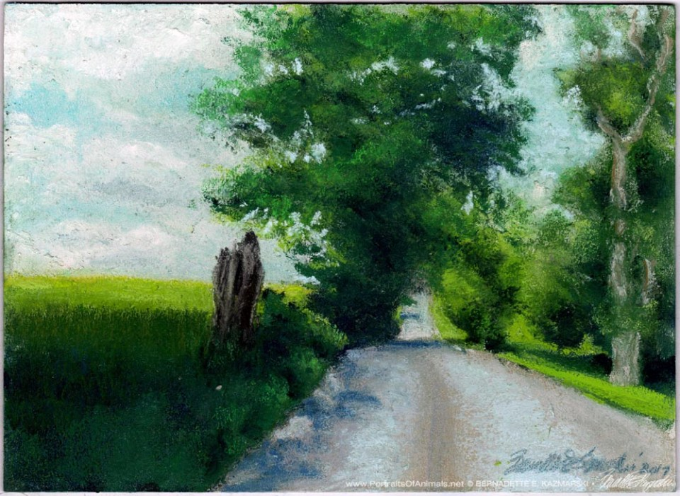 Summer Back Road, pastel on prepared board, 8 x 11 © Bernadette E. Kazmarski