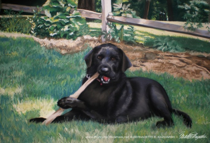 Buddy, pastel, 23 x 15.5, 2009 © Bernadette E. Kazmarski