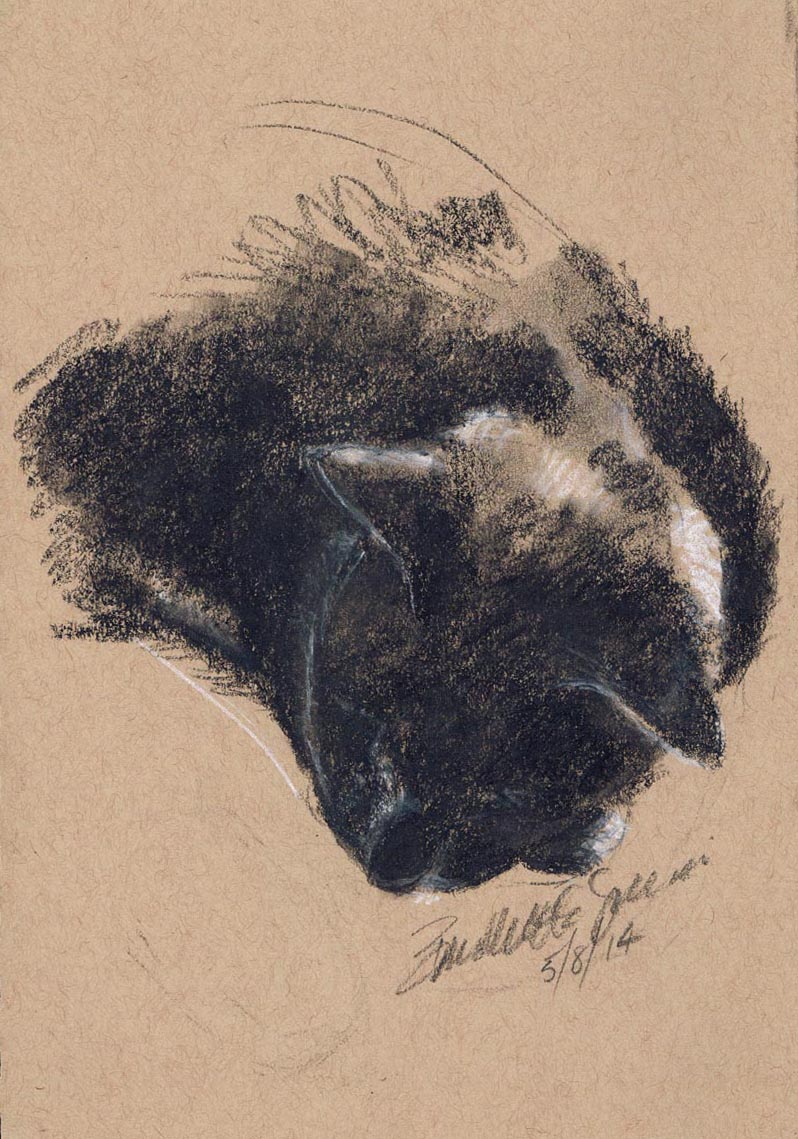 """Giuseppe Resting"", black and white charcoal on tan toned paper, 5.5"" x 8.5"" © Bernadette E. Kazmarski"