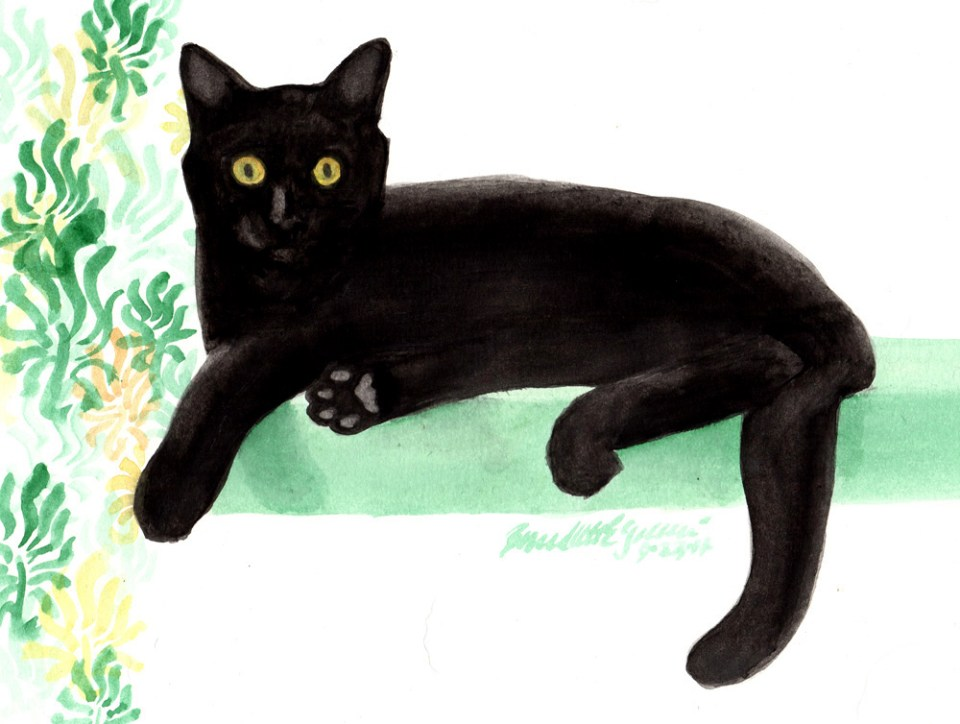 Bella, watercolor, 9/23/14 © Bernadette E. Kazmarski