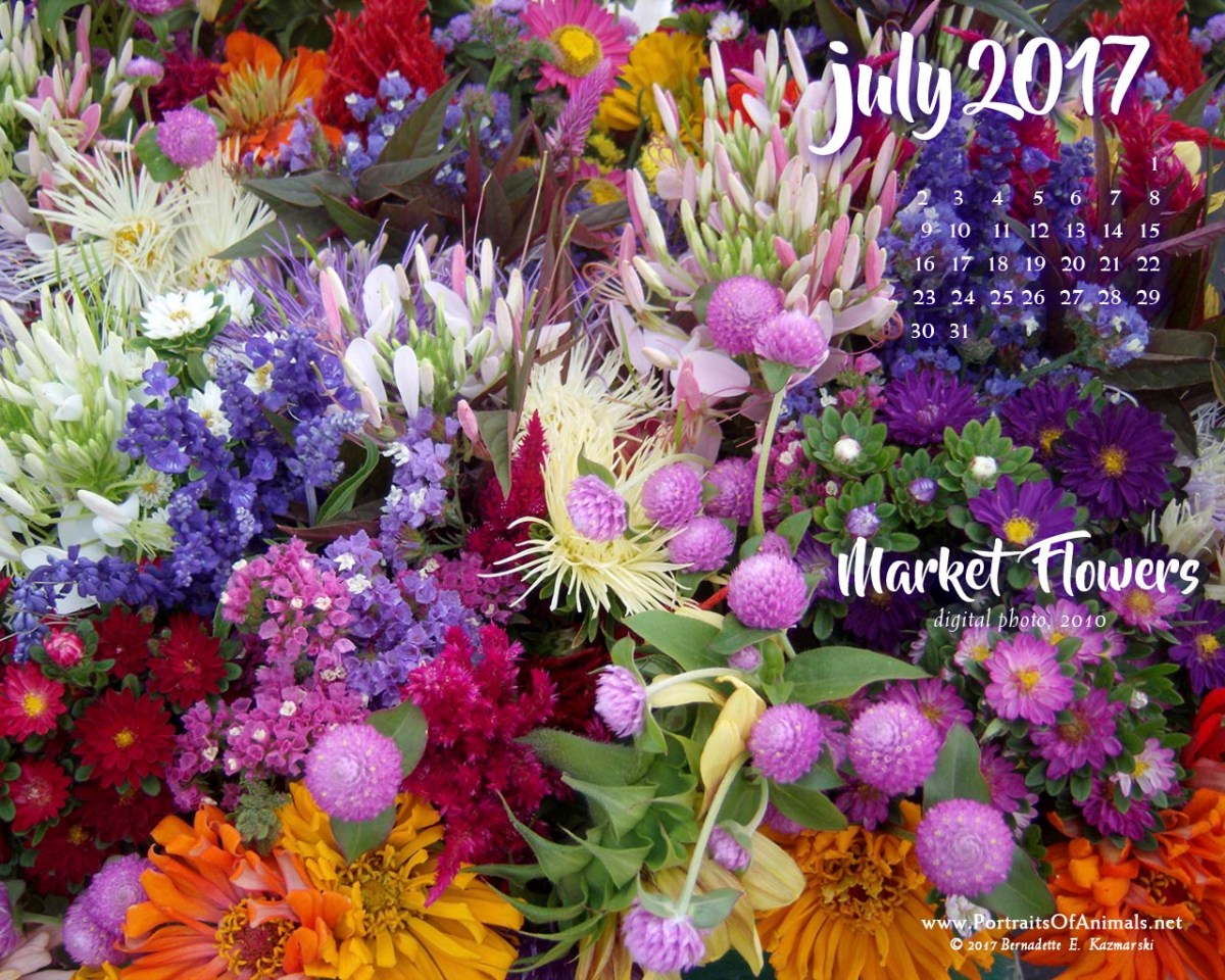 July Nature Desktop Calendar: Market Flowers