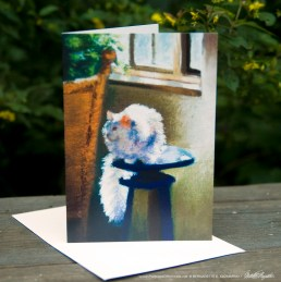 White Cat Reflecting Feline Fine Art Card