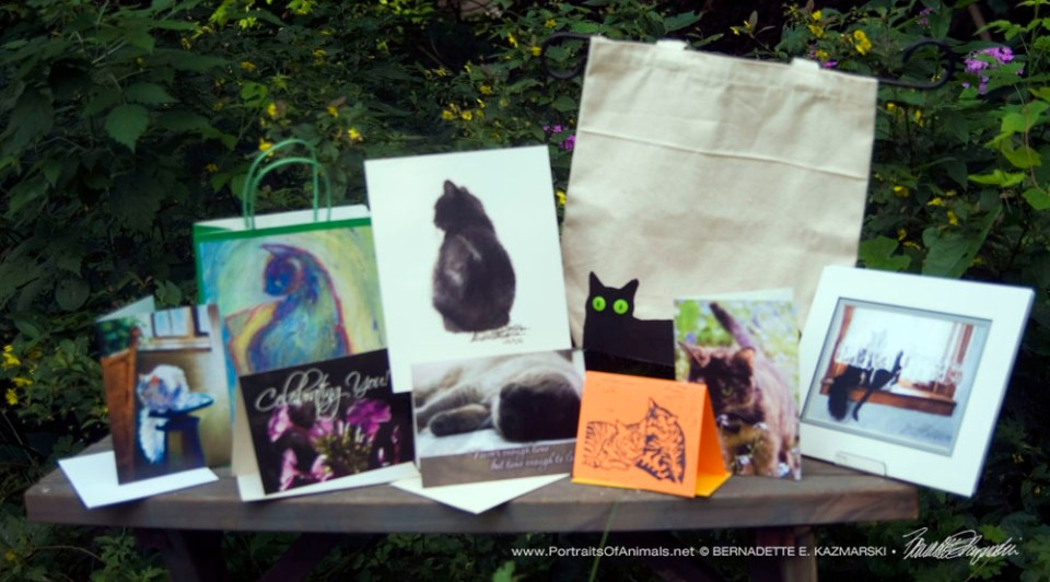 June 2017 Feline Sampler Box