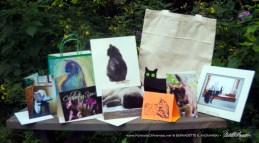 May 2017 Feline Sampler Box