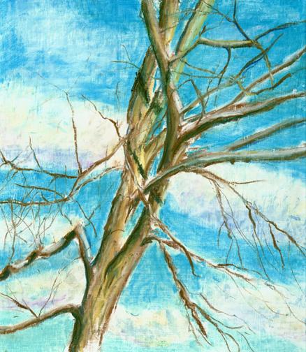 Wild Black Cherry Branches