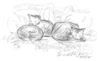 Curled on the Bed, 5 x 8, pencil © Bernadette E. Kazmarski