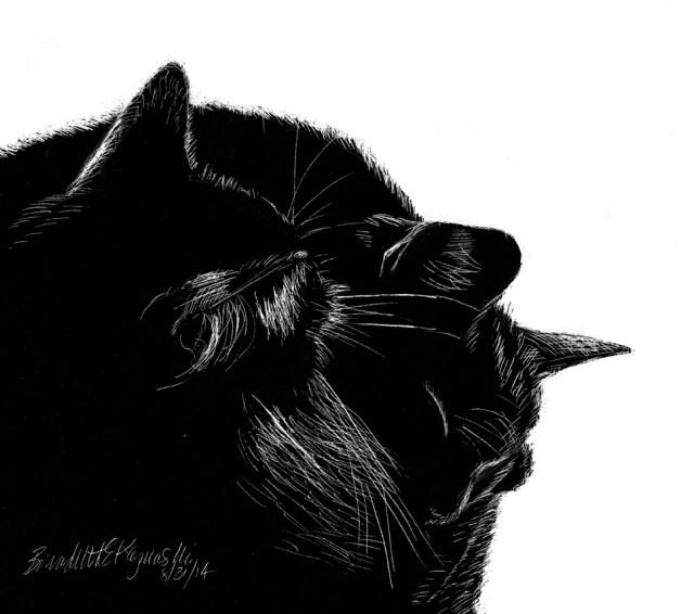 """Black and Light"", scratchboard, 8 x 8 © Bernadette E. Kazmarski"