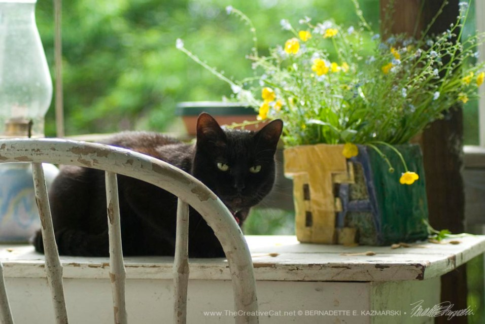 051715-Mimi-table-side