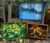 Wooden trays for my exhibit.
