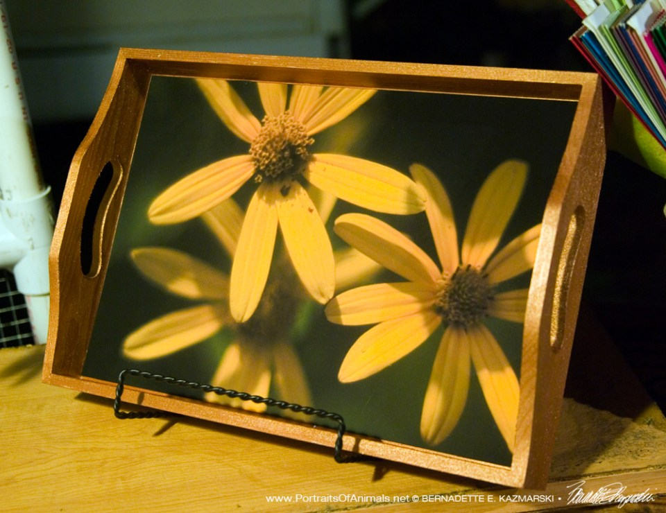 Three Sunflowers Tray