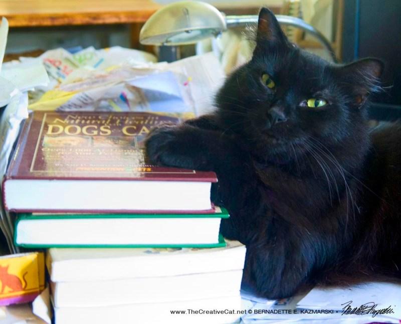 Basil and Books