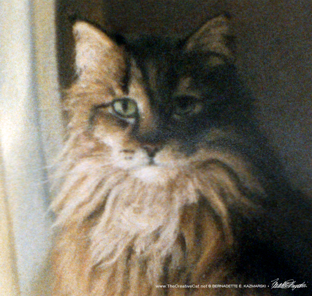 Commissioned Portrait: Herbie ~ The Creative Cat