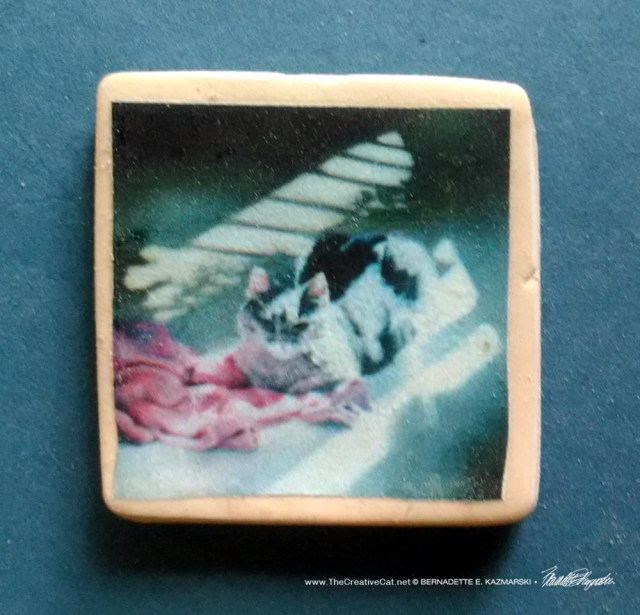 "A Rosy Glow 1"" Square Magnet"