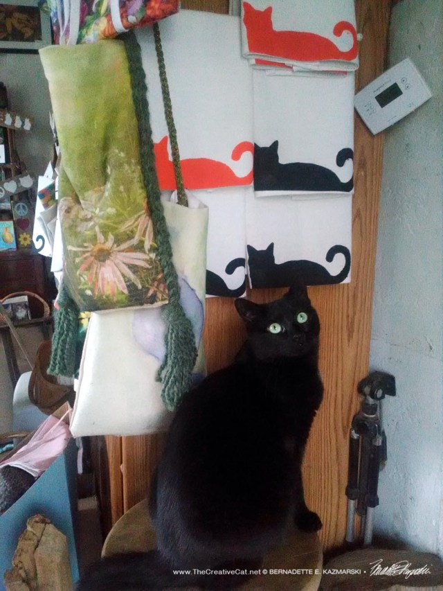 black cat with black cat designs