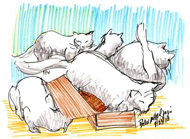 """Five Cats and One Box"", brush markers, 6.5″ x 9″ © Bernadette E. Kazmarski"