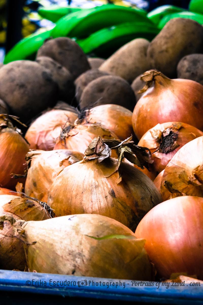 Cebollitas / Onions
