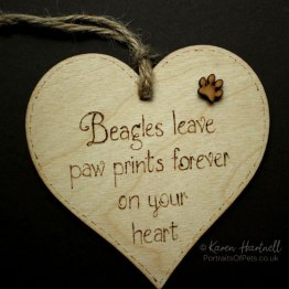 Beagle heart plaque