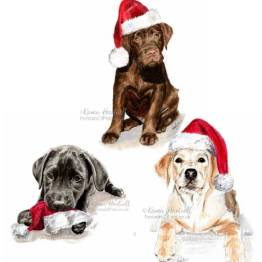 Labrador Puppy Christmas Card Mix