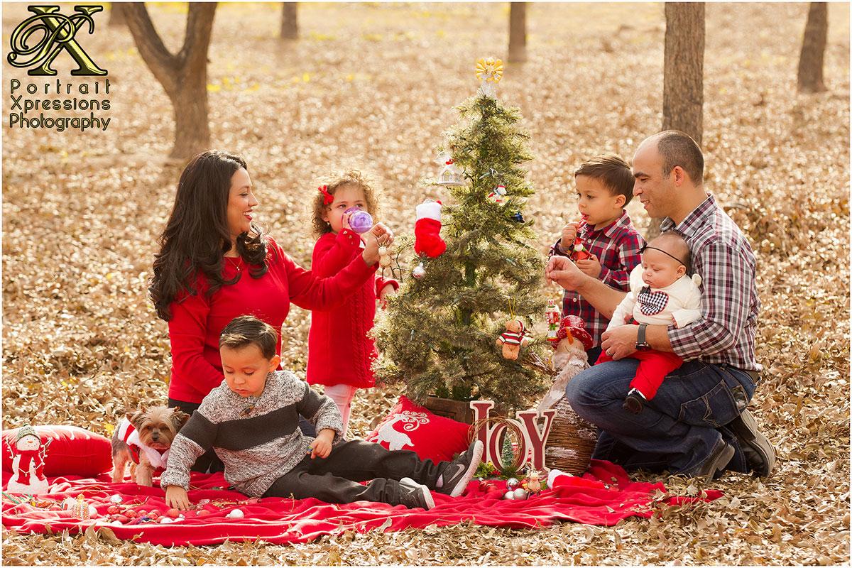 family decoration Christmas tree