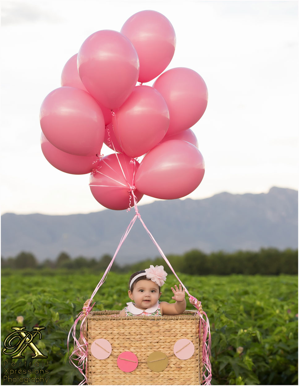 baby in basket with pink balloons