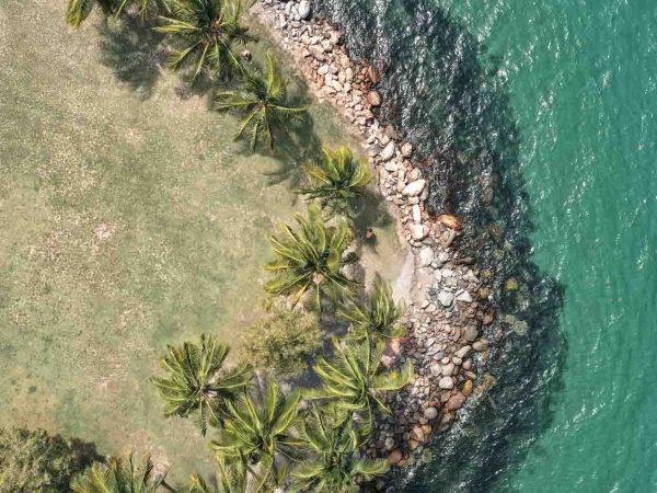 aerial photography port douglas