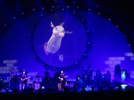 I was never a big fan of Pink Floyd , yet re visiting the music years later , I enjoyed it much more.
