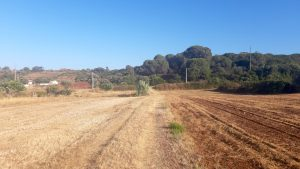 Agriculture plot close to Bensafrim.