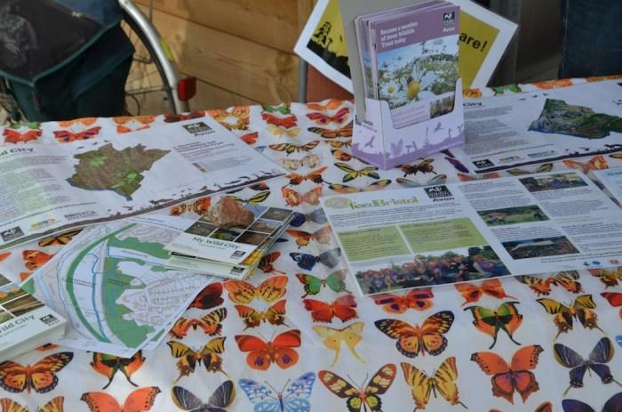 AWT butterflies