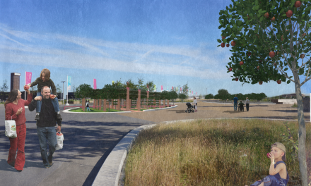 New orchard will be at the core of Queen Elizabeth Olympic Park