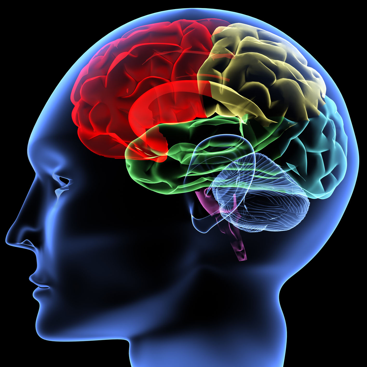 Brain game \'improves lives of schizophrenia patients\' - PosAbility ...