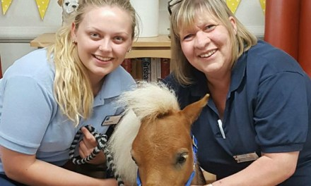 Neigh Chance of Long Faces at Edinburgh Care Home