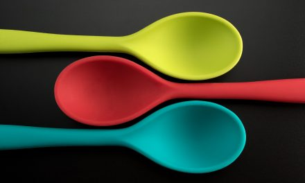 What is Spoon Theory?