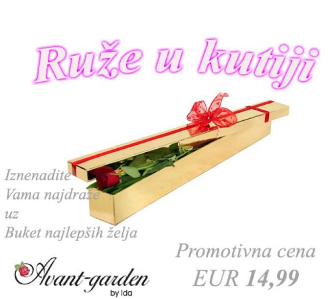 ruze-u-kutiji-3