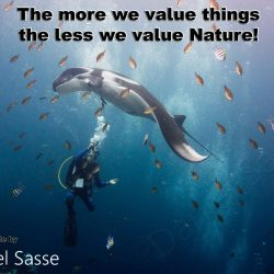 The more we value things