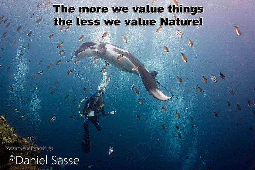 Value Nature