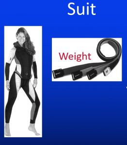 Weight and thickness of Wetsuit