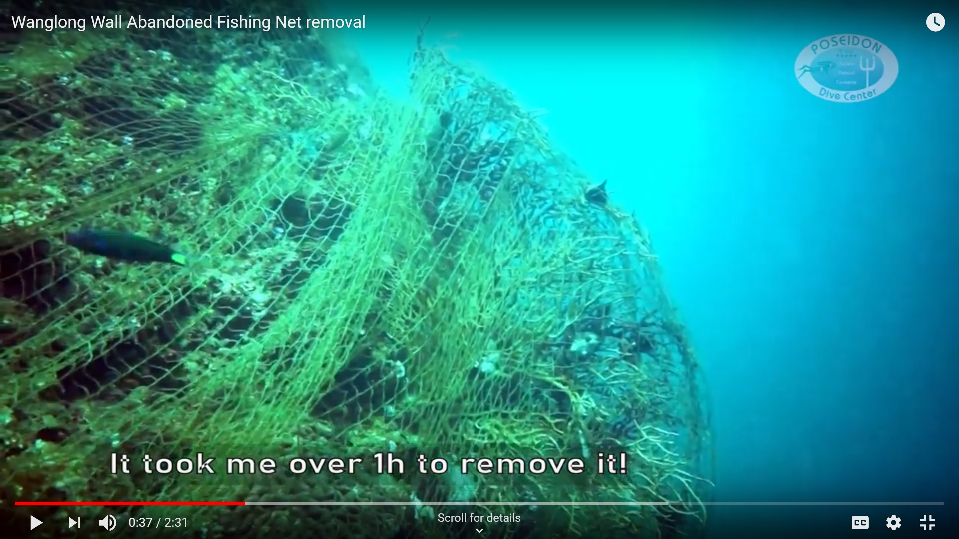 Wanglong Wall abandoned fishing net