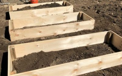 PROJECT: Simple Raised Beds for the Garden