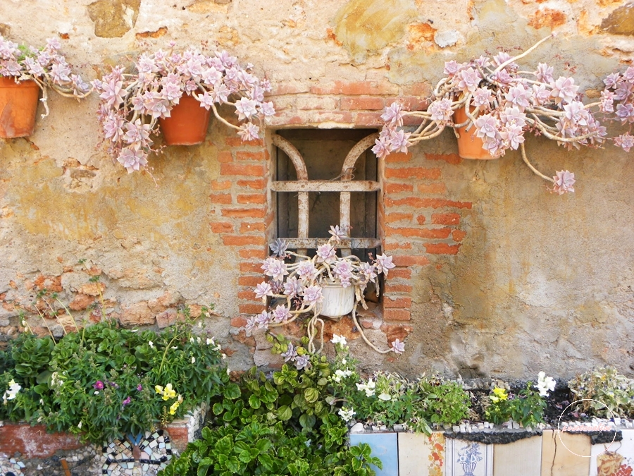 fleurs-santa-coloma-de-cervello