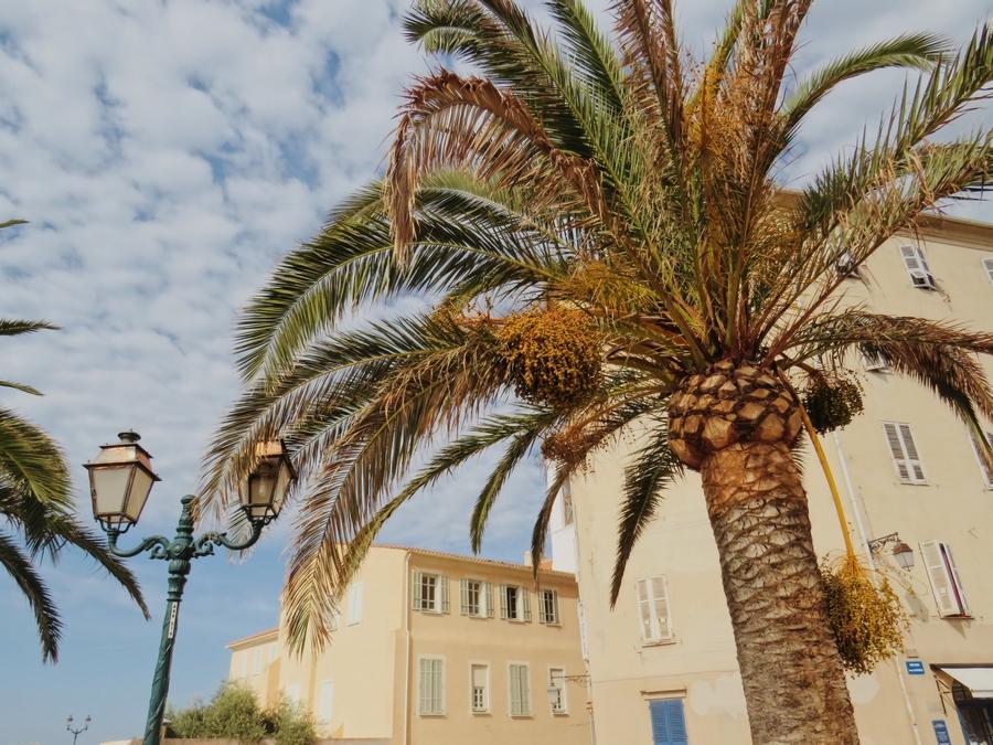 Vue sur la ville depuis la Citadelle d'Ajaccio