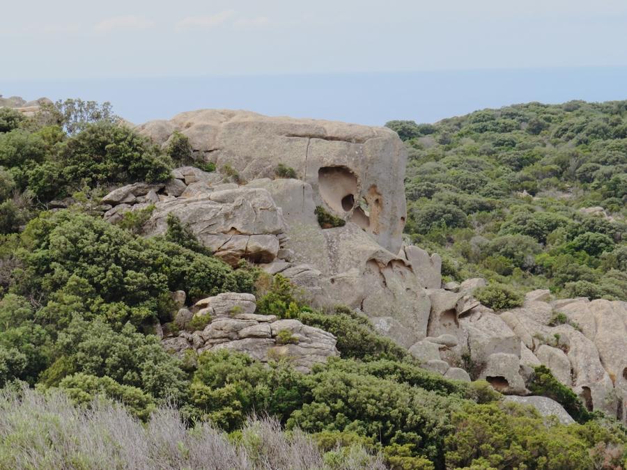 elephant roccapina corse du sud