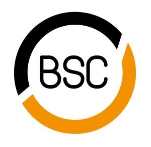 BSC token