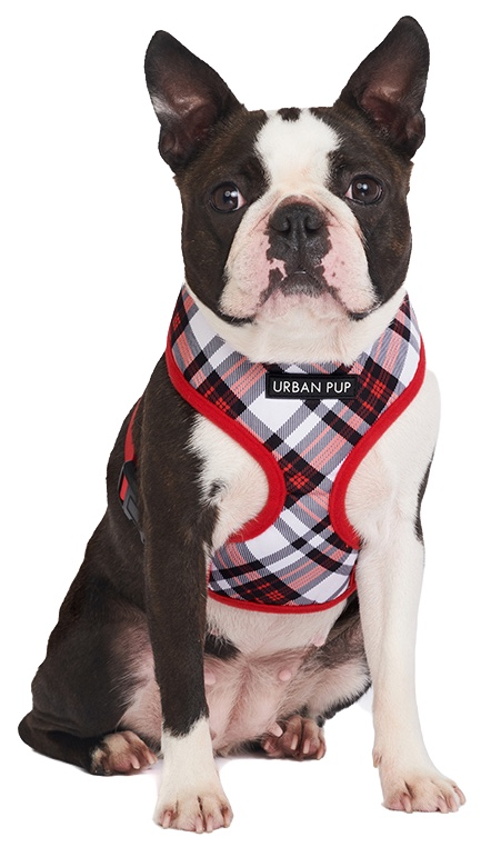 red-white-plaid-harness3