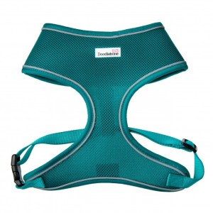 airmesh-harness-teal