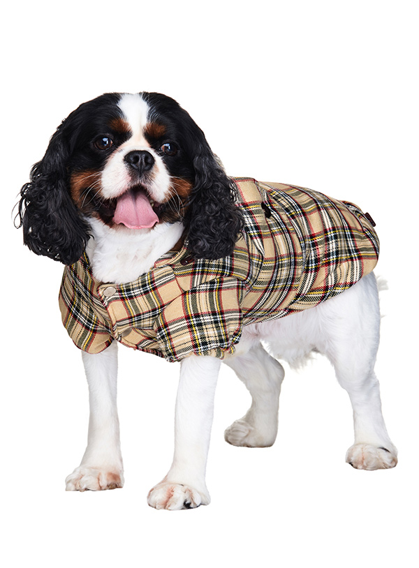 Brown-Tartan-Quilted-Dog-Coat3