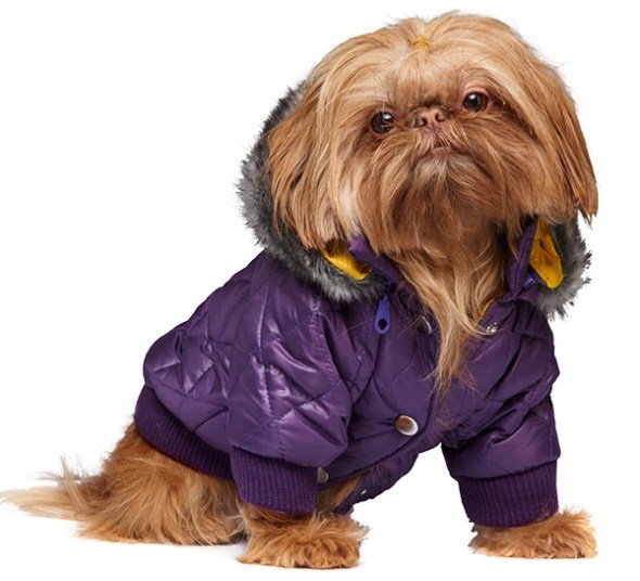 thermo-quilted-purple-dog-coat-3