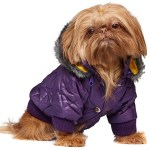 Thermo Quilted Purple Dog Coat