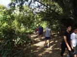 The.Arboretum.0202-40
